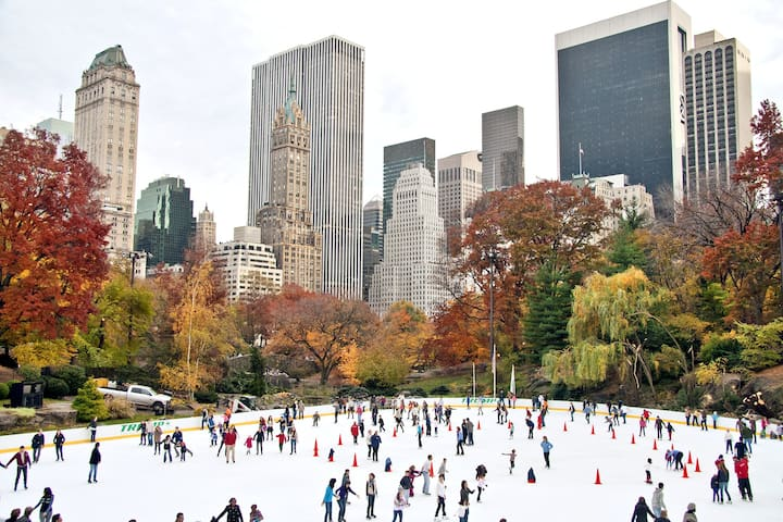 Winter time at Central Park