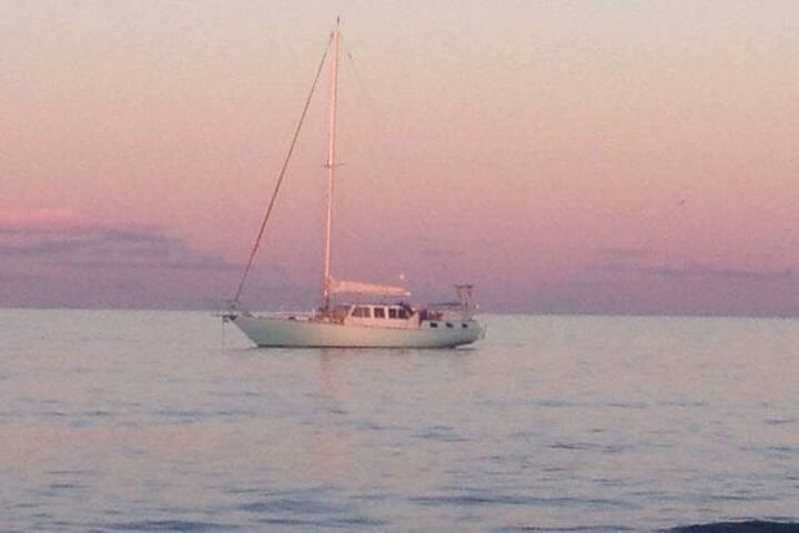 Yacht phish shows Madison sq garden - 紐約 - 船