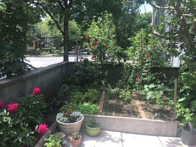 Garden patio in the heart of Commercial Drive