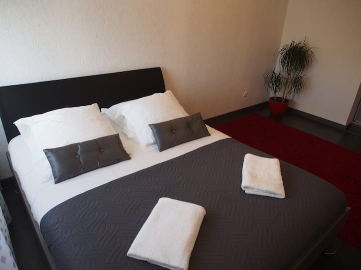"Appartement spacieux et lumineux ""Monte-Cristo"""