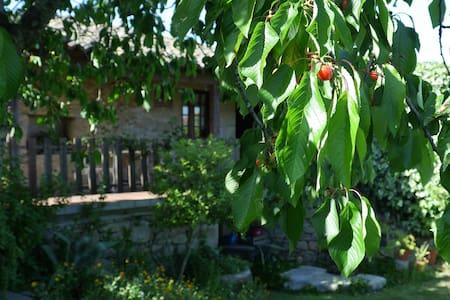 Casas do Feital - Casa do Jardim