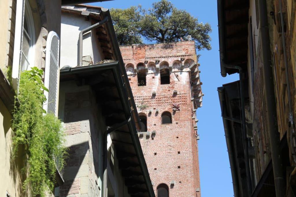 Torre Guinigi a 50 mt dalla Residenza Sant'Andrea