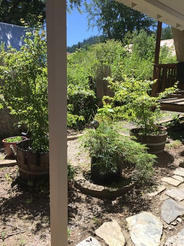 Area outside by deck