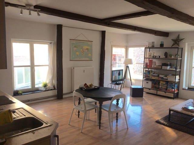 Appartement au cœur du centre ville - Liège - Apartament