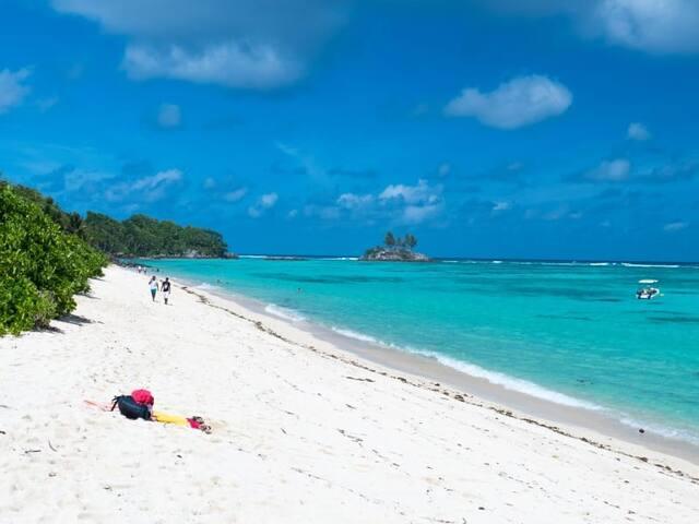 """Island Cove """"Sougoula"""""""
