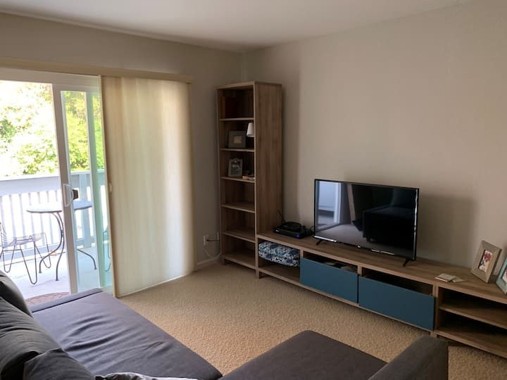 Contemporary Condo w/ pool, wifi. SF/WC Bay Area.
