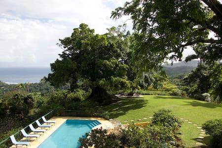 Norse Hill Estate, Port Antonio, 4-6 BR/BA, staff - Port Antonio - Villa