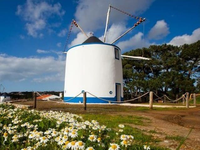 Windmill near Ericeira beach area