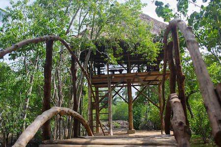 Bungalow - Leo Nature Resort Midigama - Domek parterowy