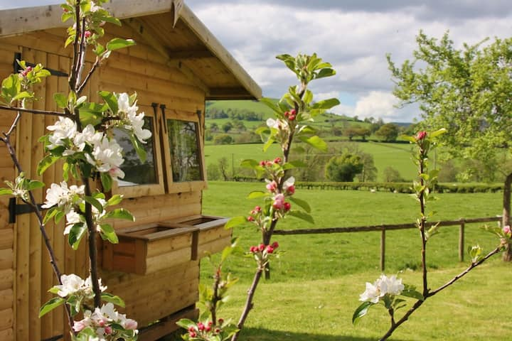 Cabin Connie ~ glamping on the Welsh border