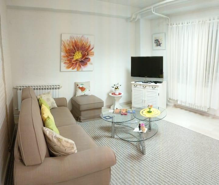 Zagreb Center Studio Apartment UNITY