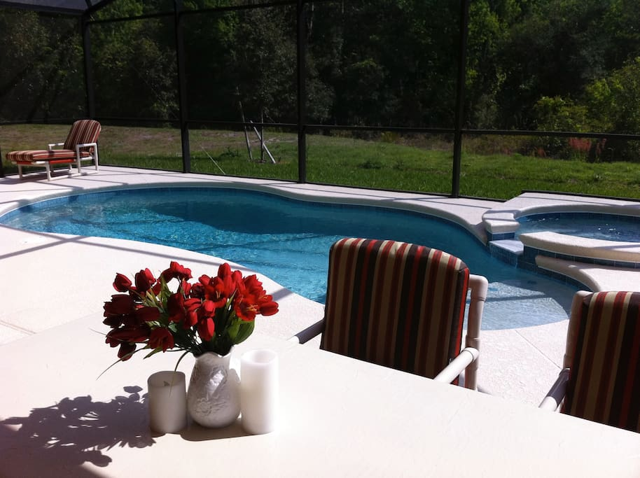 Pool From Dining Table