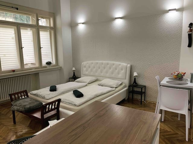 Lovely Apartment in Prague near by Charles Bridge