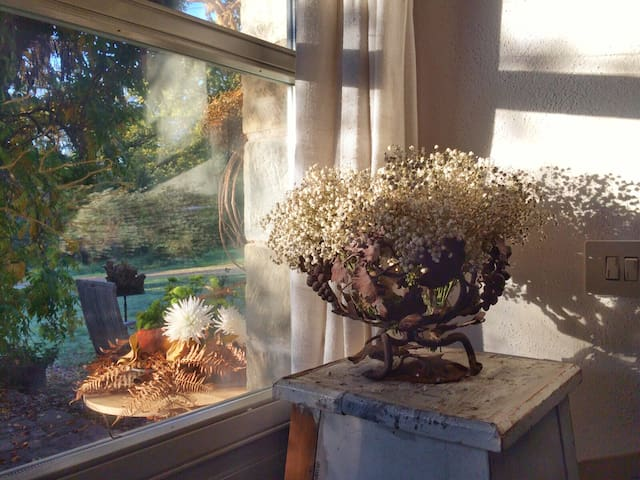 The garden enters the house and spreads throughout the rooms a friendly light