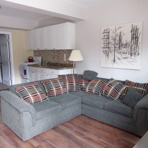 Newly renovated main floor apartment
