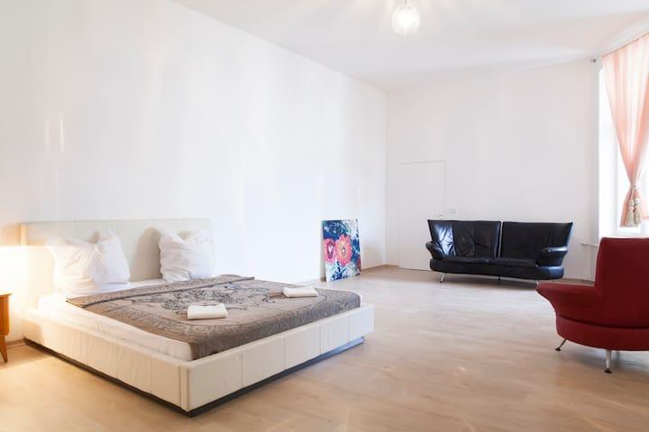A big studio apartment in central location