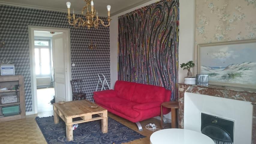 Appartement spacieux et atypique - Saint-Étienne - Byt