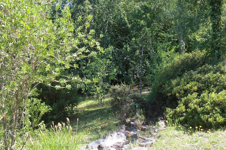 Pond & Garden Cottage - Hogsback - Domek gościnny
