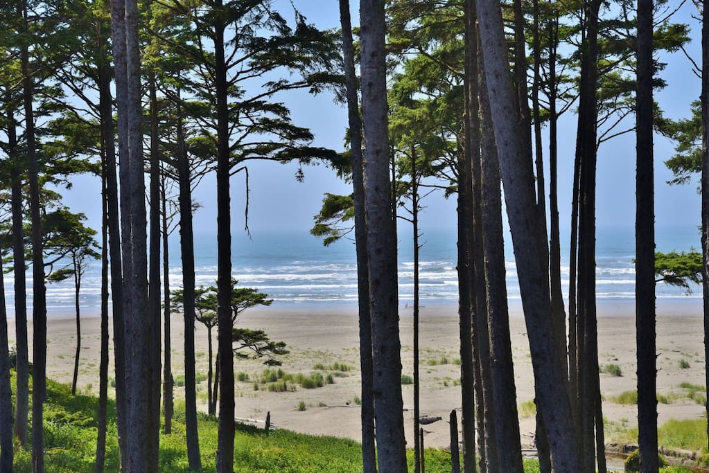 Beautiful NW coastal oceanfront view