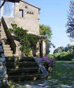 La Cerqueta Di Bagnoregio - Bagnoregio - Willa