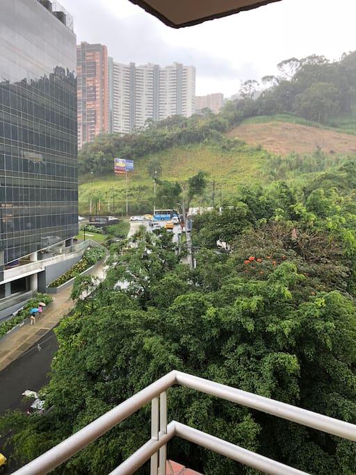 Avenida las palmas en el poblado