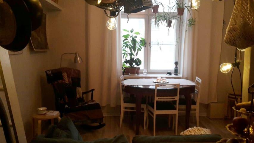 Cozy studio in Kallio
