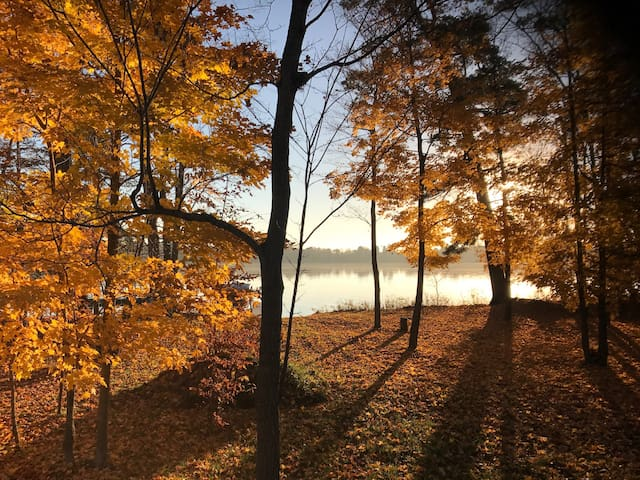 Great fall colors. This view is out the back of the cabin to the lake.