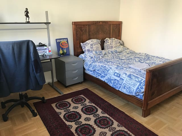 Cosy and spacious room in Ecully