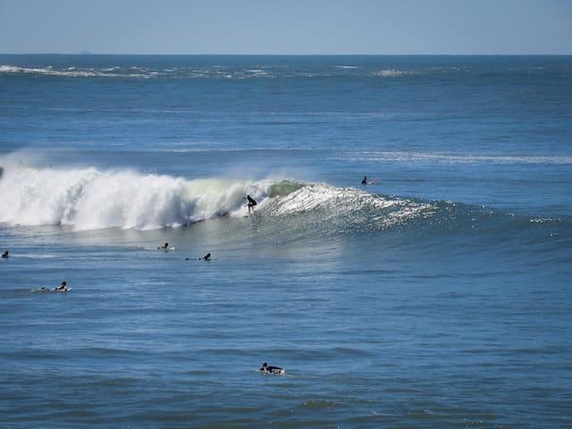Surf no Rosa Sul.
