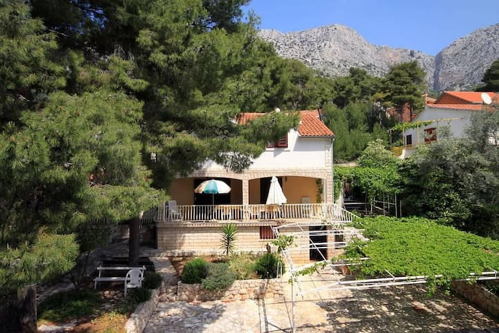 Two bedroom apartment with terrace Ivan Dolac, Hvar (A-8711-c) - Ivan Dolac - アパート