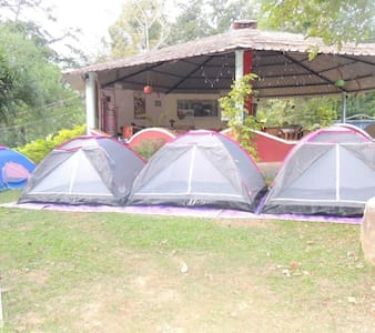 Camping Tents in Dandeli Forest - Breakfast Included