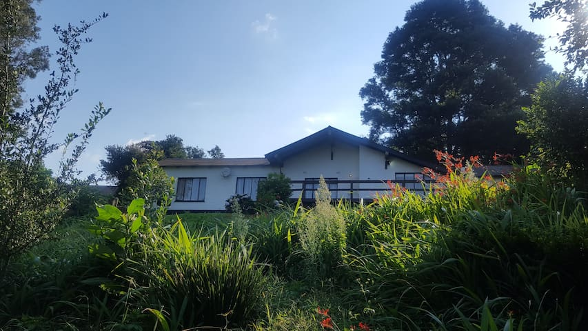 Rungu Guest house - Haenertsburg - Haus