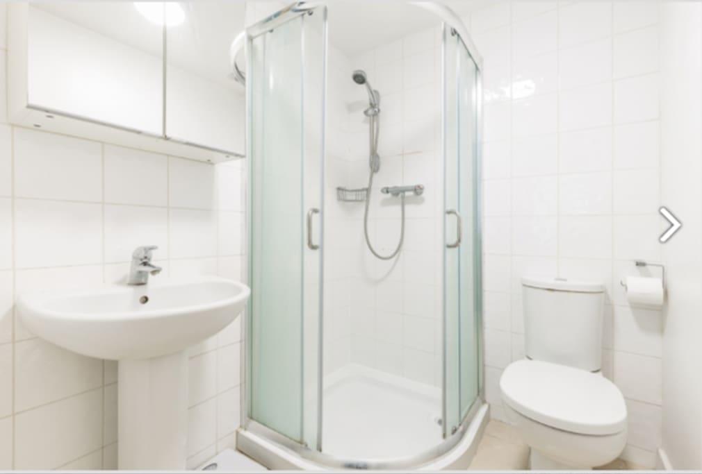En suite bathroom, spacious shower, WC, Sink and cuboards