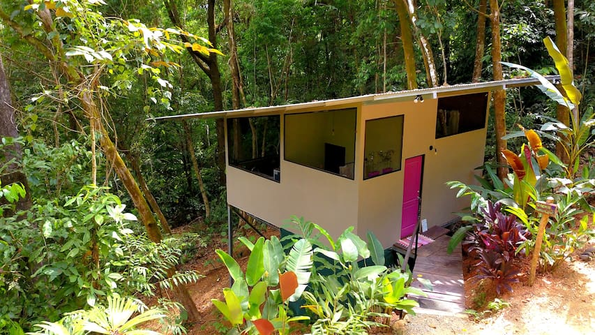 Jungle Retreat for Nature Lovers-Escape the crowds