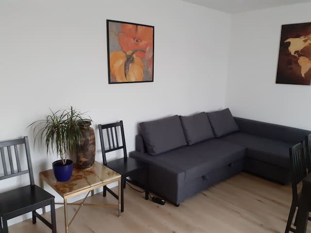 A big room for 2 person with fireplace and balcony