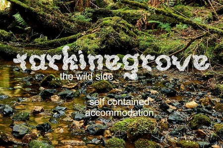 Tarkinegrove, welcomes you to the Wild Side.