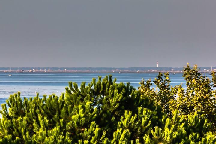Les Tchanqués - Paradis perché avec vue Bassin.
