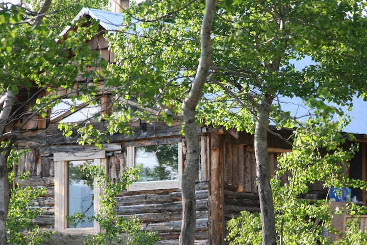 Traveling Light B&B - Lake View Cabin - Whitehorse