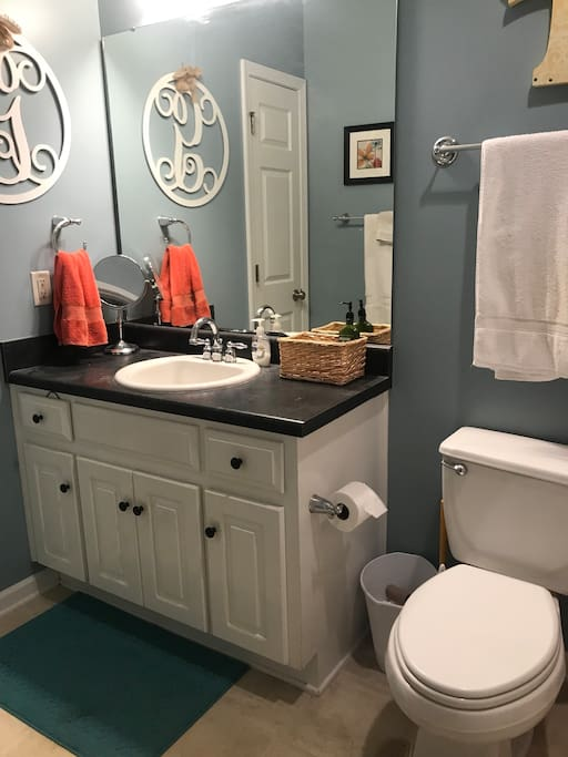 Private Guest Hall Bathroom