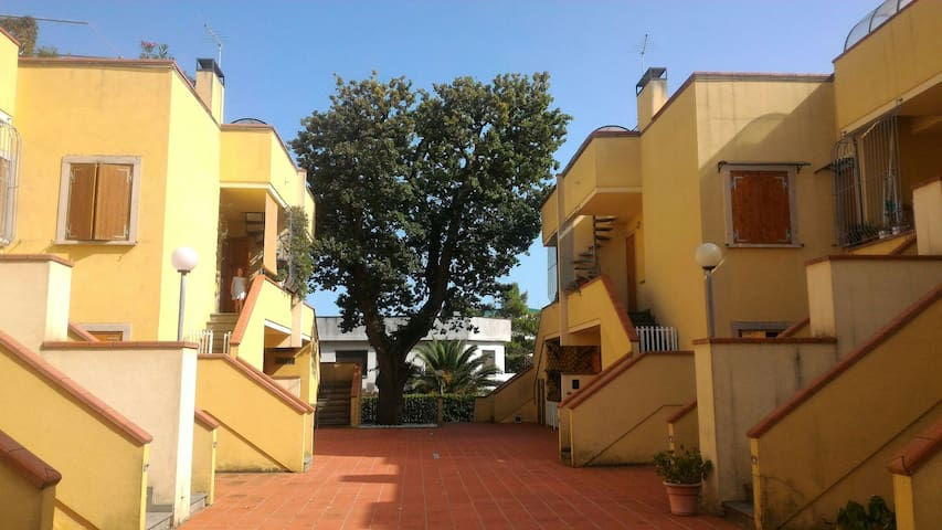 Apartment  with garden at 350 mt from see Marcelli - Marcelli - Apartamento