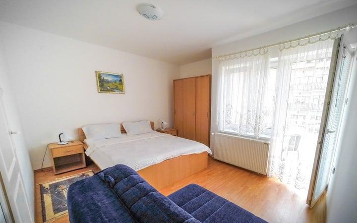 Apartman Miletic Sokobanja