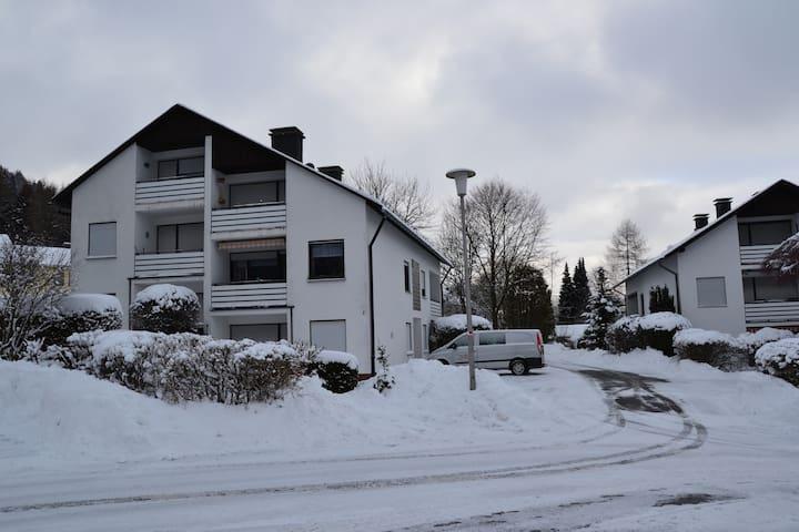 appartement in buitenwijk Willingen /balkon wiffi