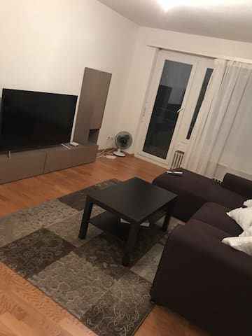 Private room in apartment very close to Zurich