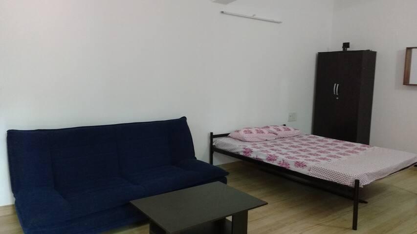 Sofa cum Bed & Queen size bed