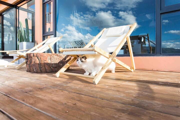 一楼私享露台湖景房#有浴缸#享最美湖景庭院#私享露台#三只巨可爱小猫#免费停车#101