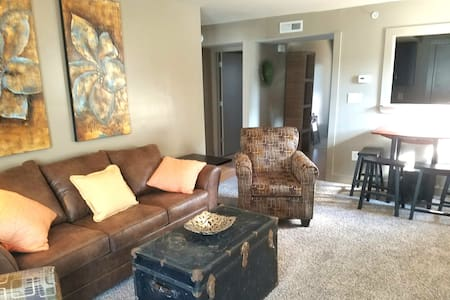 #101 Lofts- comfy flat, downtown area Clks