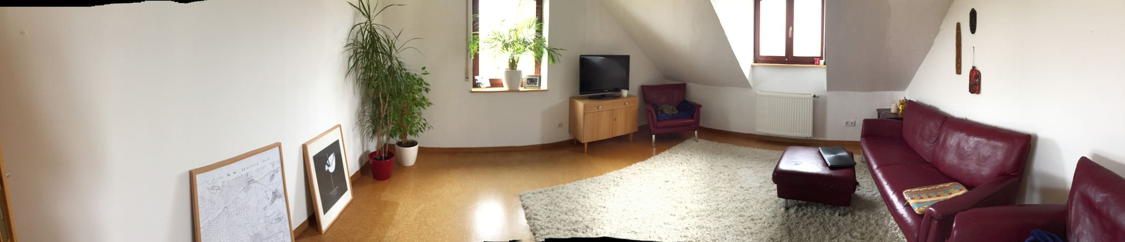 Living in a small village 5 min. from Hilpoltstein - Hilpoltstein - Apartamento