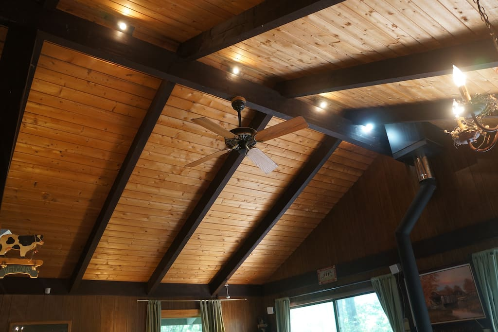 Cathedral Ceiling in open concept living room/kitchen/dining room