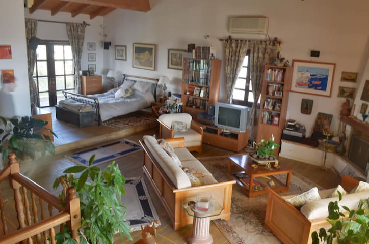 A luxury flat,  perfect sea view,  swimming pool - Voula - Bed & Breakfast