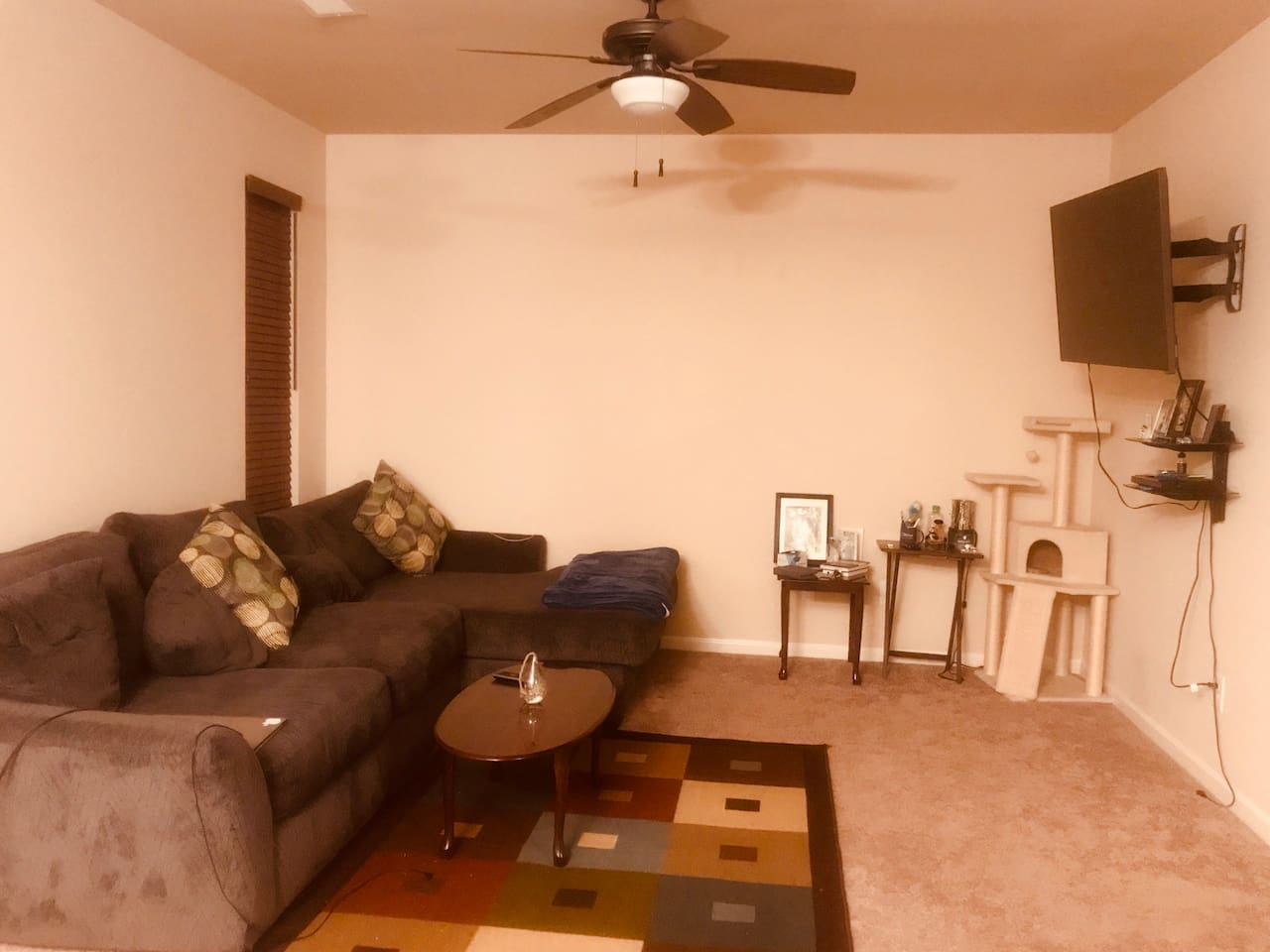 Living room with a TV+DVD player and couch